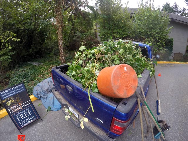 Burnaby Landscaping Service Strata Townhouse