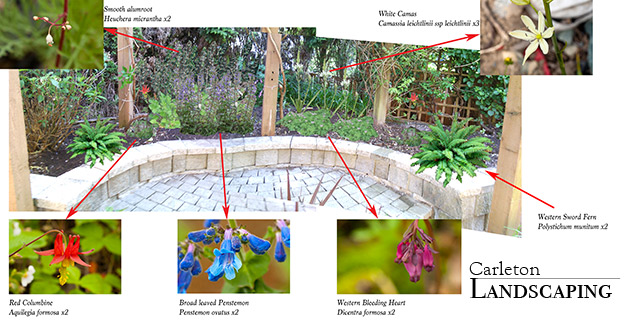 Click here for Visual Garden Design example.